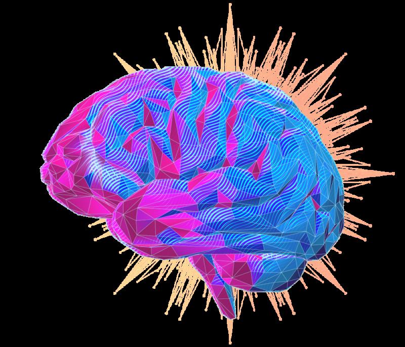 brain-header-sclub-1